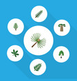 flat icon natural set of baobab rosemary maple vector image vector image