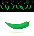 green chillies vector image