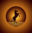 Horse in desert vector image