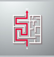 maze labyrinth with solution vector image vector image
