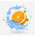 orange fruit in water splash realistic fruit vector image vector image