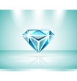 Presentation of a diamond vector image vector image