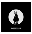 rabbit logo design rabbit logo concepts vector image