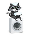 Raccoon maid sitting on washing machine isolated