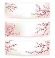 set beautiful floral banners eps 10 vector image