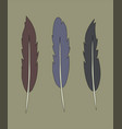 set of flat simple feather vintage color vector image