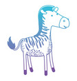zebra cartoon in degraded blue to purple color vector image