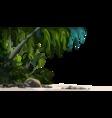 jungle plants vector image