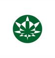 circle cannabis logo modern vector image
