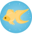 gold fish in water with bubbles vector image