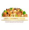 nuts at banner made for vegetarian organic food vector image vector image