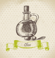 Olive oil hand drawn vector | Price: 1 Credit (USD $1)