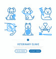 veterinary clinic thin line icons set vector image vector image