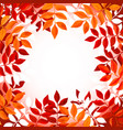 floral background with orange and red leaves vector image