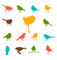set silhouettes birds vector image