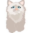 small feathery kitty vector image vector image