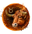 taurus is a sign zodiac vector image vector image