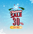 Christmas Sale 30 Percent typographic background vector image vector image