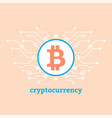 cryptocurrency concept bitcoin sign in circle vector image