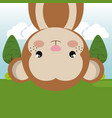 cute monkey in the field landscape character vector image