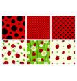 ladybug patterns set vector image