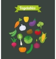 Vegetables icon design vector image