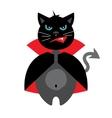 Halloween Crazy Black Cat Cartoon vector image vector image