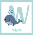 letter w vocabulary blue whale