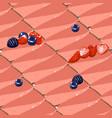 triangular cheesecake pieses strawbrry taste vector image