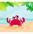 a funny crab vector image vector image