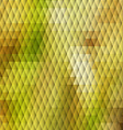 Autumn themed background with diamond grid vector image vector image