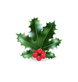 festive holy branch vector image vector image