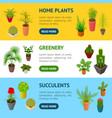 green plants in pot banner horizontal set 3d vector image vector image