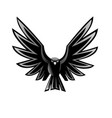 a open wings eagle vector image vector image