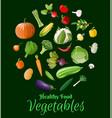 big vegetable icon set vector image vector image