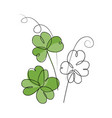 continuous line drawing shamrock leaves bouquet vector image vector image