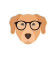 labrador in glasses cute dog vector image vector image