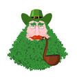 leprechaun beard in shamrock face clover mustache vector image vector image