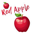 red apple fruit cartoon icon isolated vector image vector image