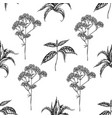 seamless pattern with black and white aloe nettle vector image