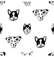 seamless pattern with dog breeds bulldog husky vector image