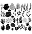 set of marine corals silhouettes vector image vector image