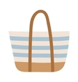 Summer bag isolated on white vector image vector image