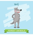 Wolf forest animals vector image vector image