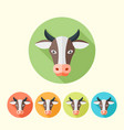 cow head flat round icons with long shadow vector image vector image