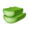cutted aloe vera icon realistic style vector image
