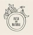 fresh and natural fruits food healthy organic vector image vector image