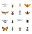 Insect Icon Flat vector image vector image