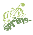 spring beauty vector image vector image