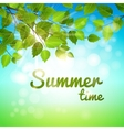Summertime background with fresh green leaves vector image vector image